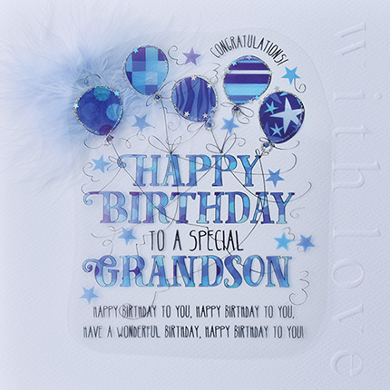 For A Special Grandson Birthday Card